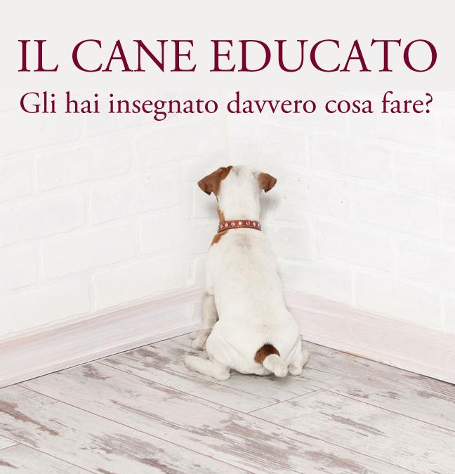 Cosa significa apprendere per un cane?