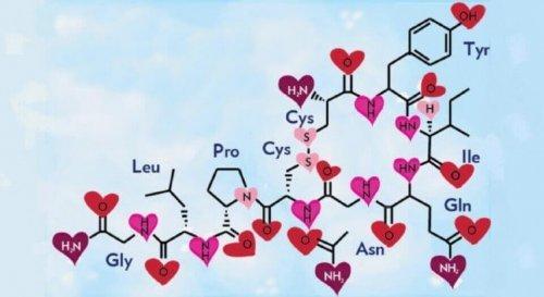 Legame d'attaccamento: tra amore e neuropeptidi