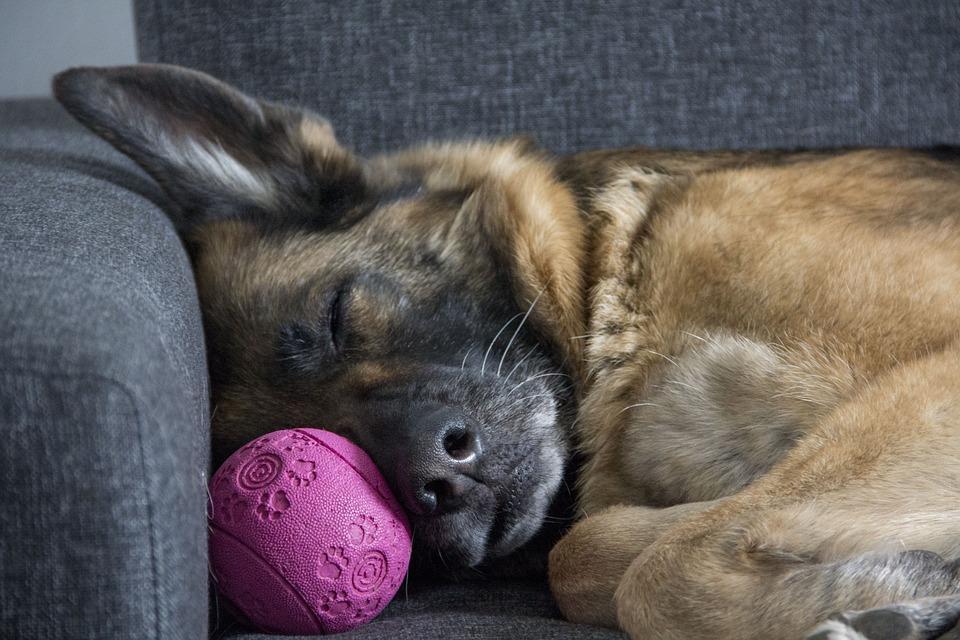I benefici del sonno